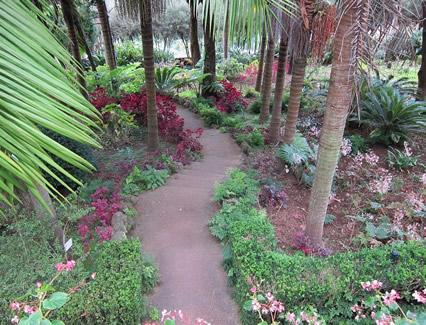 Gartenanlage-mit-Baeumen