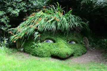 Garten mit gräsern gestalten  Gräser Bepflanzung im Garten - Ziergras Tipps