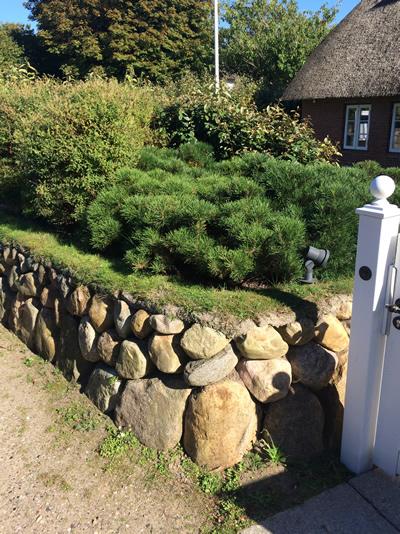 Steinwand-mit-Gartenpflanzen