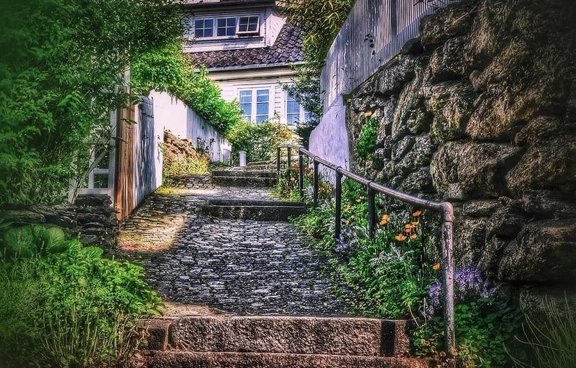 steintreppe-bewachsen