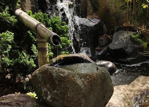 Wasserspiel-im-Gartenteich