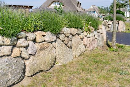 Ideen Und Tipps Fur Sichtschutz Im Garten
