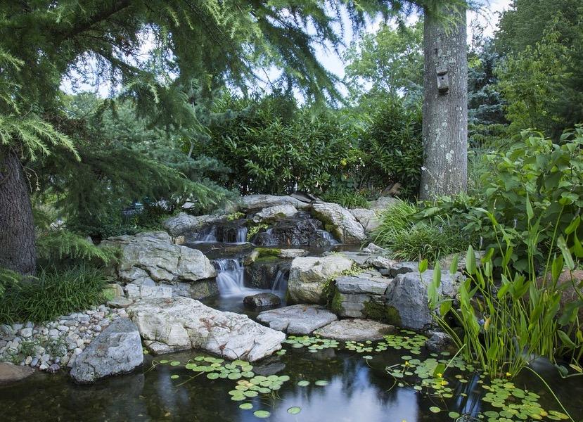 Atemberaubend Wassergarten anlegen - Tipps und Ideen für Wasserspiele #VK_06