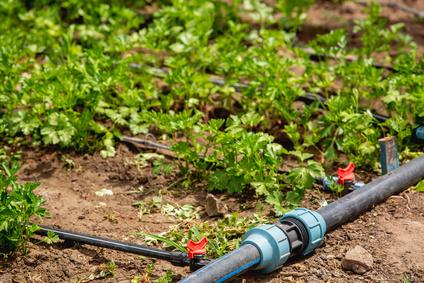 Super Selber Wasserleitung im Garten verlegen - Tipps & Anleitung MD26